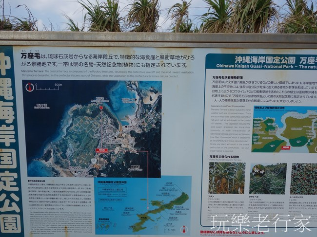 【日本 沖繩】那霸巴士一日遊(下), 冬天的沖繩一樣好玩 -萬座毛, 水族館,鳳梨水果園