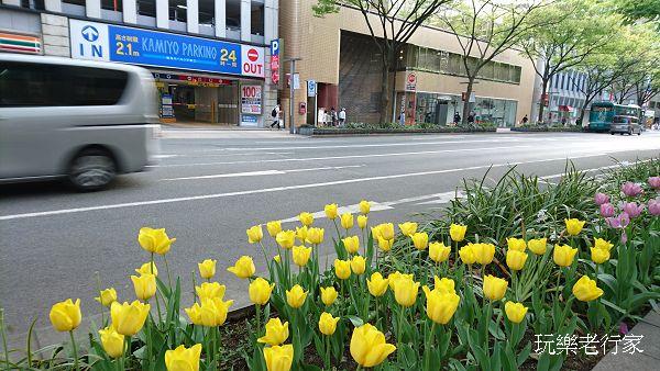 【日本北九州之旅】 福岡 、太宰府、 熊本城 重點之旅